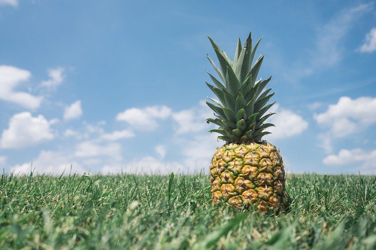 pineapple, green, nature