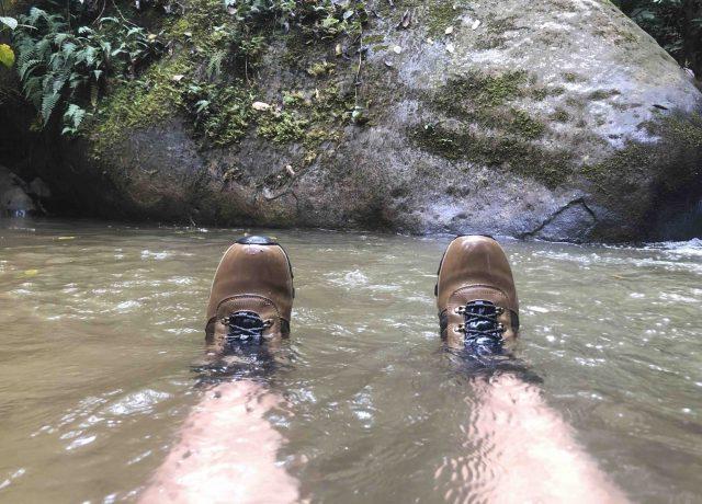 Zapatos posa